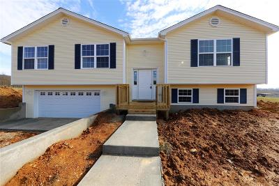 Meade County Single Family Home For Sale: Lot 5 Red Hawk Drive