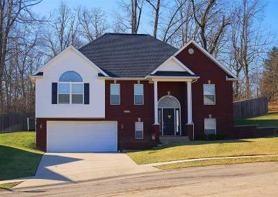 Elizabethtown Single Family Home For Sale: 508 Richmond Court