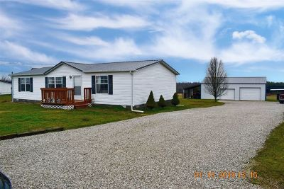 Hodgenville Single Family Home For Sale: 4139 N L & N Turnpike