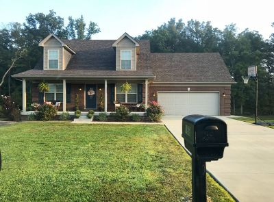 Nelson County Single Family Home For Sale: 162 Peabody Loop