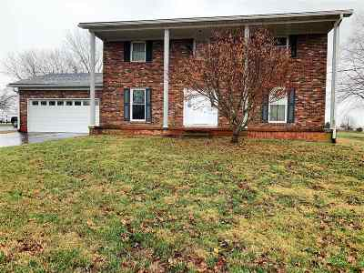 Buffalo Single Family Home For Sale: 820 S L & N Turnpike