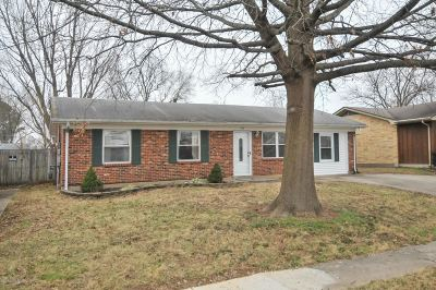 Meade County, Bullitt County, Hardin County Single Family Home For Sale: 244 Crator Drive