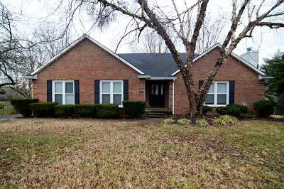 Elizabethtown Single Family Home For Sale: 206 Pear Orchard Road