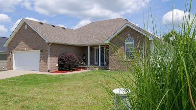 Meade County, Bullitt County, Hardin County Single Family Home For Sale: 641 Wind Brook Drive