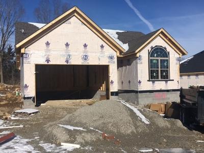 Bullitt County Single Family Home For Sale: 502 Meadowcrest Drive