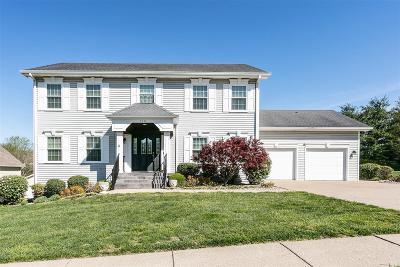 Elizabethtown  Single Family Home For Sale: 718 Spruce Lane