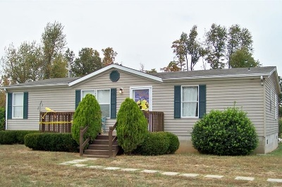 Meade County Single Family Home For Sale: 325 Bewley Road