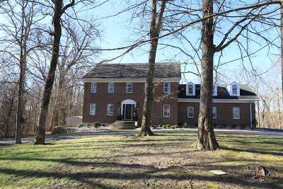 Brandenburg Single Family Home For Sale: 691 De Brown Road