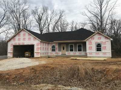 Meade County Single Family Home For Sale: 234 Wood View Drive