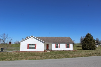 Rineyville Single Family Home For Sale: 868 Thompson Road