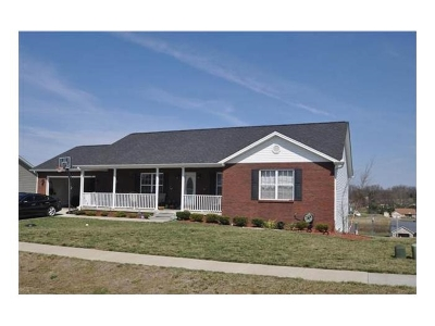 Hardin County Single Family Home For Sale: 207 Blue Ridge Way