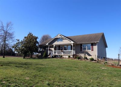 Rineyville Single Family Home For Sale: 565 Martin Road