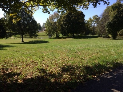 Vine Grove Residential Lots & Land For Sale: Lot 8 Otter Creek Road