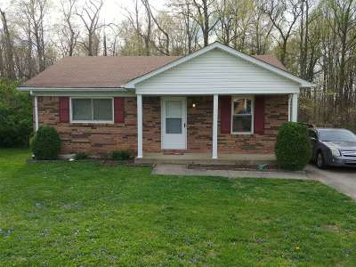 Elizabethtown Single Family Home For Sale: 45 W Airview Drive