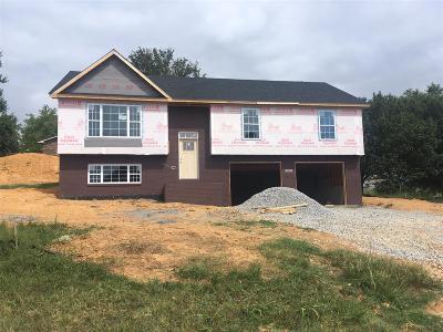 Meade County, Bullitt County, Hardin County Single Family Home For Sale: 400 Linda Lane