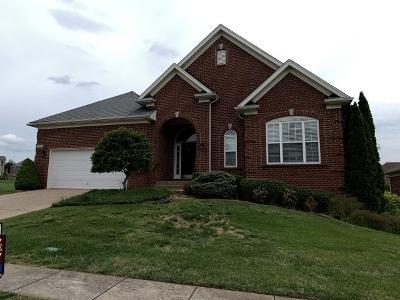 Hardin County Single Family Home For Sale: 213 Evergreen Garden