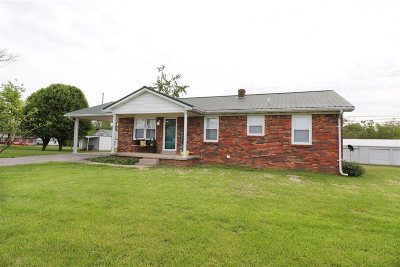 Breckinridge County Single Family Home For Sale: 3855 Highway 259