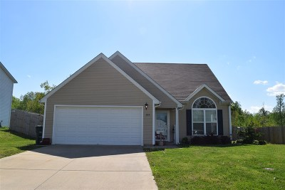 Elizabethtown Single Family Home For Sale: 224 Blossom Lane