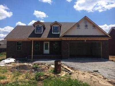 Mt Washington Single Family Home For Sale: 409 Meadowcrest Drive