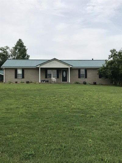 Rineyville Single Family Home For Sale: 360 Rineyville School Road