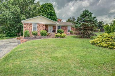 Shepherdsville Single Family Home For Sale: 238 Salt River Drive