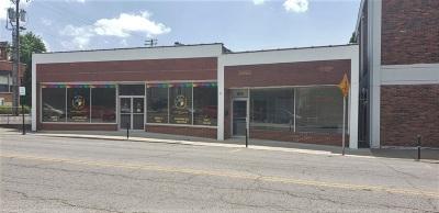 Elizabethtown  Commercial For Sale: 109 S Main Street