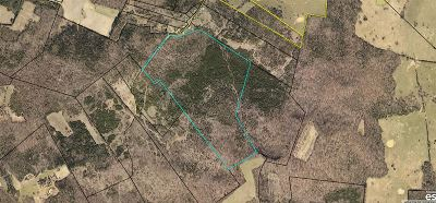 Residential Lots & Land For Sale: Lot 0 Tom Duvall Lane