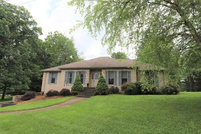 Brandenburg Single Family Home For Sale: 238 Pinnacle Drive