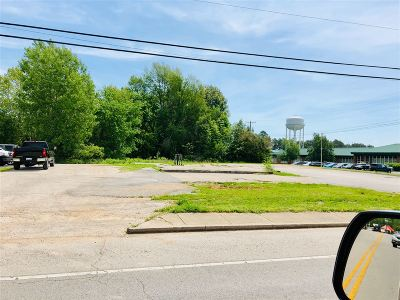 Hodgenville Commercial For Sale: 805 Lincoln Boulevard