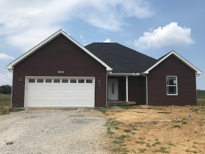 Elizabethtown KY Single Family Home For Sale: $198,900