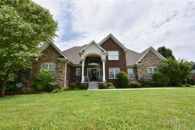 Meade County, Bullitt County, Hardin County Single Family Home For Sale: 224 Apple Lane