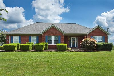 Meade County, Bullitt County, Hardin County Single Family Home For Sale: 7088 Rineyville Road