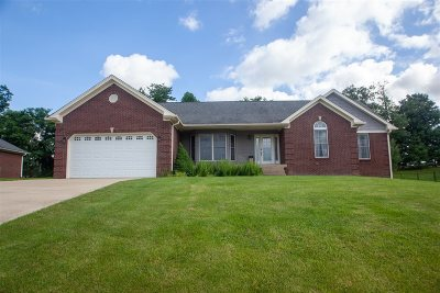 Meade County Single Family Home For Sale: 158 Summit Drive