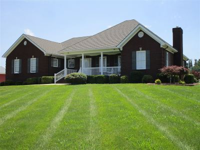 Meade County Single Family Home For Sale: 115 Grandview Drive
