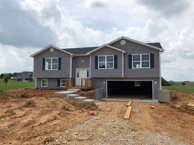 Meade County Single Family Home For Sale: 2669 New Highland Church Road