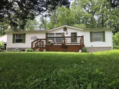 Brandenburg Single Family Home For Sale: 580 Gaines Farm Road