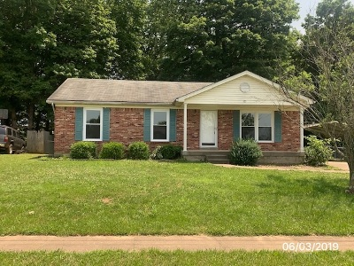 Nelson County Single Family Home For Sale: 125 Valley View Drive