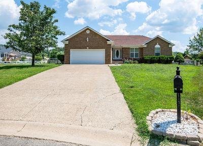 Shepherdsville Single Family Home For Sale: 376 Jade Drive