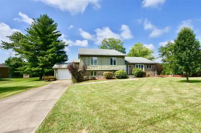 Brandenburg Single Family Home For Sale: 3827 E Doe Valley Parkway