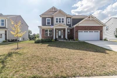 Shepherdsville Single Family Home For Sale: 213 Summers Cabin Lane