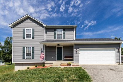 Meade County, Bullitt County, Hardin County Single Family Home For Sale: 153 Winter Wood Drive