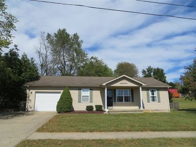 Meade County, Bullitt County, Hardin County Single Family Home For Sale: 102 Airport Road