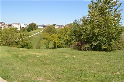 Frankfort KY Residential Lots & Land For Sale: $18,000