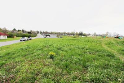 Anderson County Residential Lots & Land For Sale: 37 Lynn Drive