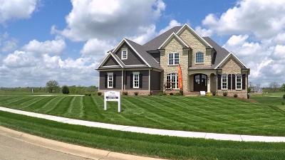 Nicholasville Single Family Home For Sale: 102 Mahin Trail