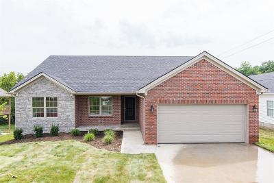Nicholasville Single Family Home For Sale: 1228 Orchard