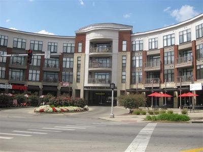 Lexington Condo/Townhouse For Sale: 650 S Mill Street #212