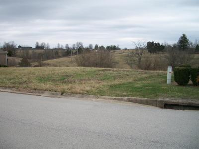 Anderson County, Fayette County, Franklin County, Henry County, Scott County, Shelby County, Woodford County Residential Lots & Land For Sale: 1005 Scotts Way