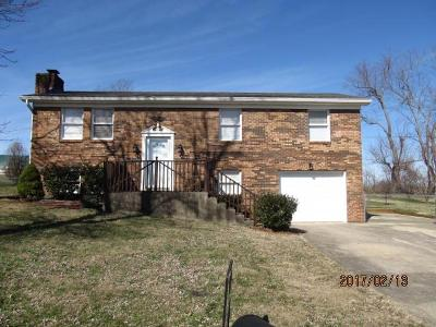 Single Family Home For Sale: 123 Brewer Drive