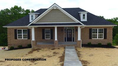 Lancaster Single Family Home For Sale: 289 River Run Road
